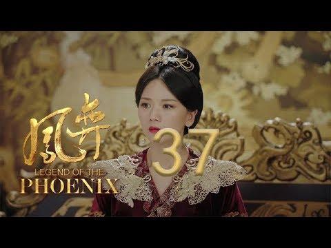 凤弈 37 | Legend Of The Phoenix 37(何泓姗、徐正溪、曹曦文等主演)