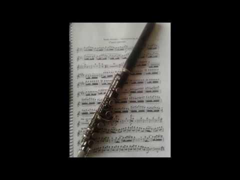 Rimsky-Korsakov - Scheherazade (piccolo excerpt from 4th movement): Vinicius Prates - Piccolo