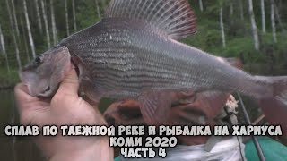 Сплав по таёжной реке и рыбалка на хариуса в Коми 2020 Часть 4 Такого хариуса я ещё не ловил