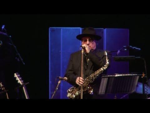Van Morrison - Freedom of the City Gig (Nov 2013)