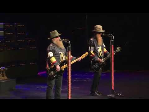 Image result for zz  top golden knights
