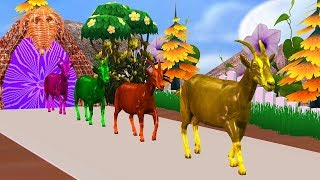Farm Animals Are Transformed Into Wild Animals And Their Young - Animals Names For Kids Rhymes