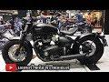 Triumph ????? Ducati BMW ?????????? 2 ????? ???? Bobber Black , Speedmaster , Tiger 800