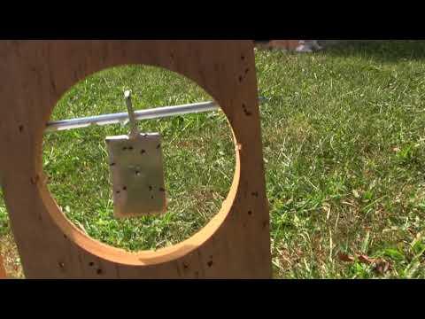 DIY BB Gun Targets