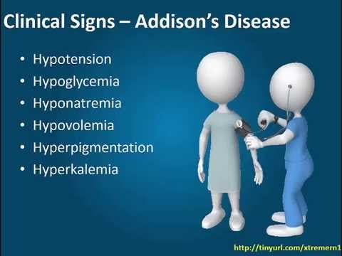Addison's Disease - YouTube