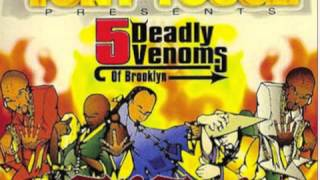 Tony Touch The Five Deadly Venoms Of Brooklyn Mixtape