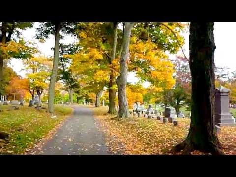 On the road at Woodlawn Cemetery to Mark Twain's Grave