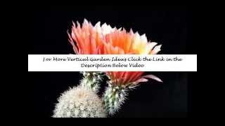 Vertical Garden | Vertical Gardening | Diy Vertical Gardening | Ideas | How To |planter