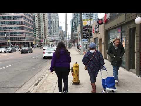 Toronto Neighbourhood Walk - Along Yonge St In North York City Centre (Willowdale) - 4K