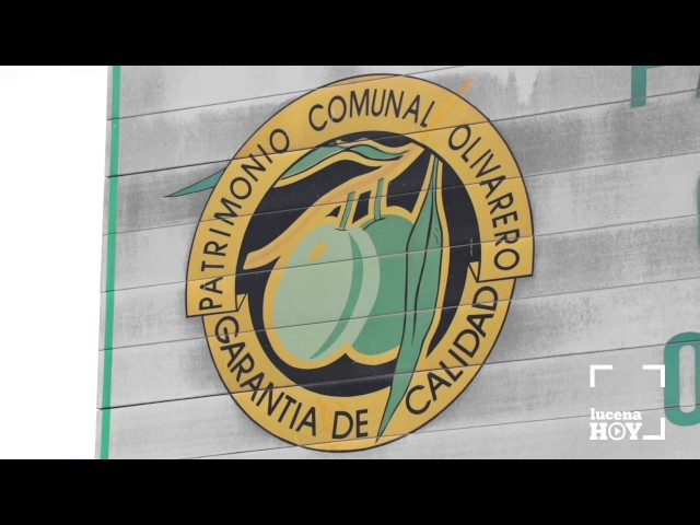 VÍDEO: Aceiteros y ayuntamiento se unen para evitar el cierre de los depósitos de Patrimonio Comunal