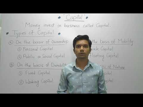 What are the type of capital-Economics syllabus