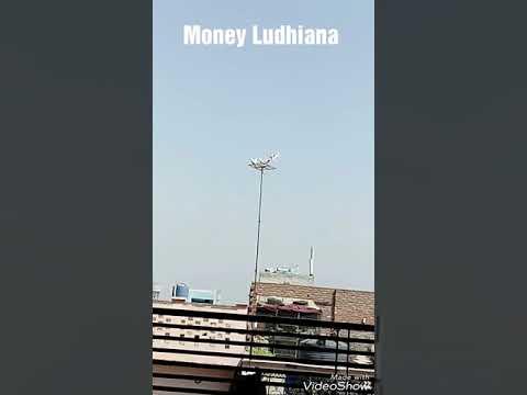 Money ludhiana
