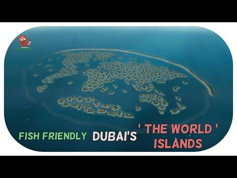 New eco friendly tourism in Dubai's 'THE WORLD' islands