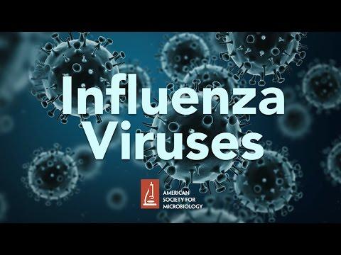 Influenza Viruses by James McSharry, PhD