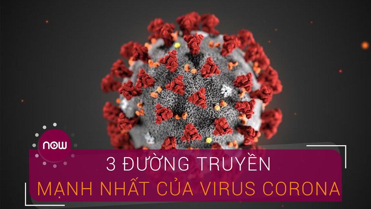 3 đường lây truyền mạnh nhất của virus Corona | VTC Now