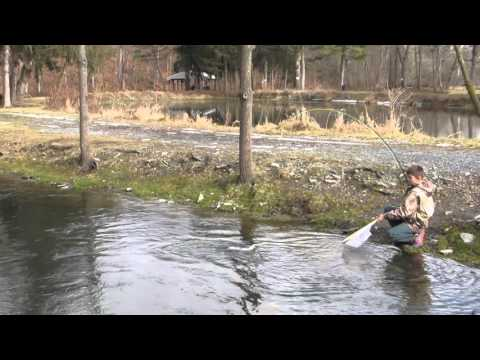 Limestone Springs Fishing Preserve Fish 3
