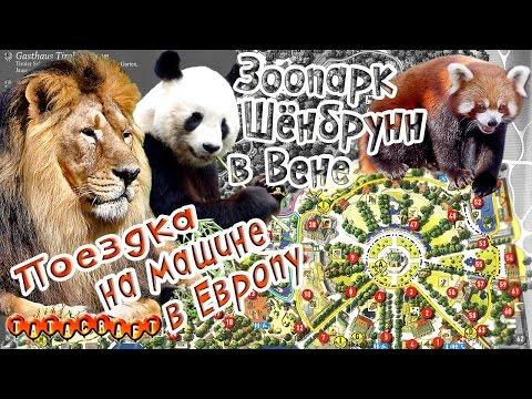 Зоопарк Шёнбрунн/Венский зоопарк/Австрия/На машине в Европу