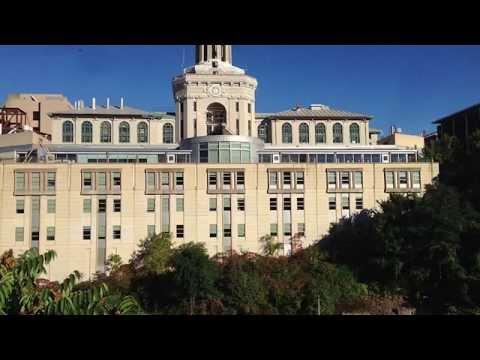 Carnegie Mellon Crushes 800 Dreams