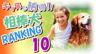 子供にとって良き友人(相棒)となってくれるだろう愛犬の ランキングTOP1...