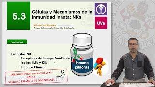 5.3 CÉLULAS Y MECANISMOS DE LA INMUNIDAD INNATA: NKs
