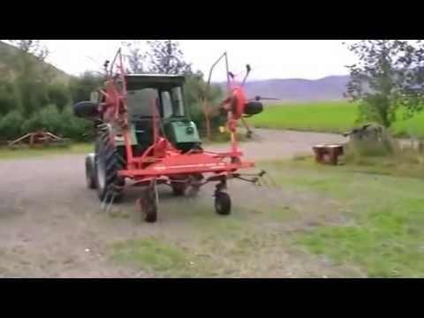 Dairy Farming Iceland