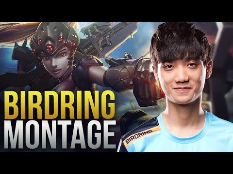 Birdring - PRO DPS From London Spitfire - Overwatch Montage thumbnail