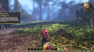 Legends of Aethereus Gameplay (PC HD)