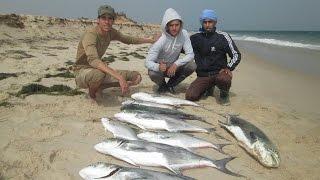 صيد سمك أولاح بالقصبة في الداخلة موسم 2016 - HD