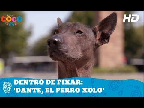 Coco De Disney Pixar Dentro De Pixar Dante El Perro Xolo Hd
