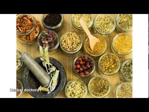 herbal doctors