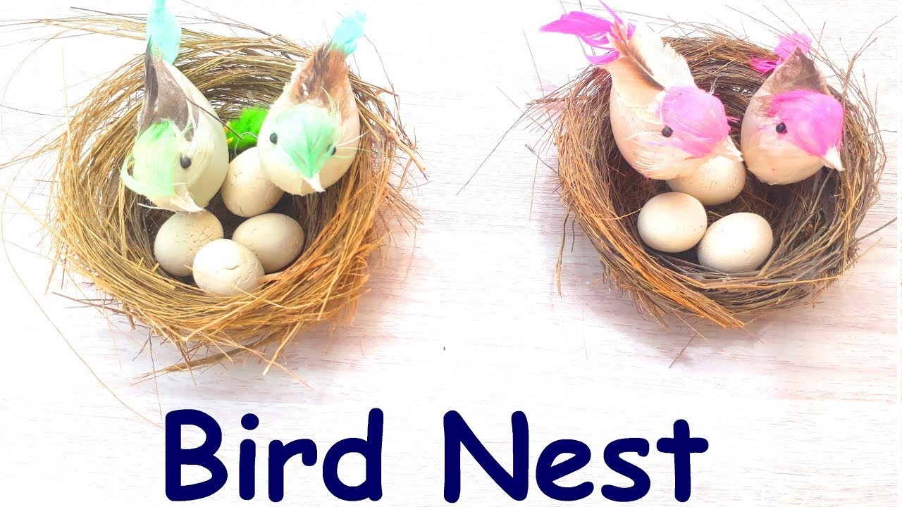 How To Make A Bird Nest L Easy Diy Projects Youtube