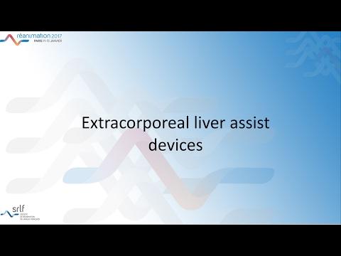 Réanimation 2017 - Acute liver failure (2) J. WENDON