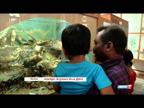 On the eve of World Museum Day, lets visit Gass Forest Museum | Tamil Nadu | News7 Tamil