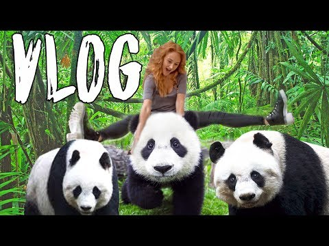 Kiev Ukraine Travel Vlog 2 | I Got To Ride A Panda!
