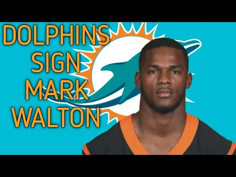 Miami Dolphins Waive Mark Walton