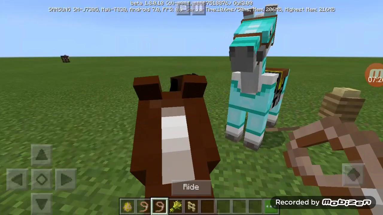 Cách mặc giáp cho con ngựa và con chó sói đơn giản nhất( bắt Nguyễn )