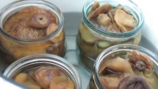 АВСТРАЛИЯ 405:Как сохранить соленые грибы!