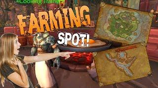 BFA Gold Making - Farming Spots & instant Spots! 20k to 45k In 30 Mins! 8.1