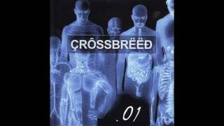 Watch Crossbreed Reflections video