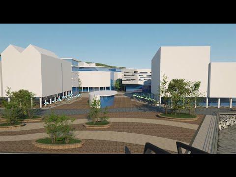 University of Wales Trinity Saint David   A New University Experience