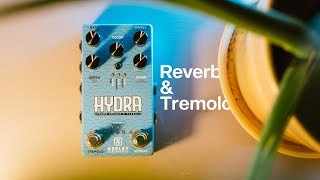 Keeley Electronics HYDRA: Stereo Reverb and Tremolo!