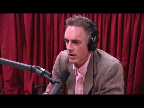 Jordan Peterson: Women's Studies is a taxpayer subsidized radical revolution