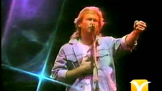 Mr Mister, Broken Wings, Festival de Viña 1988