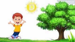 Урок 16 Природознавство 1 клас. Яке значення для життя на Землі має Сонце?