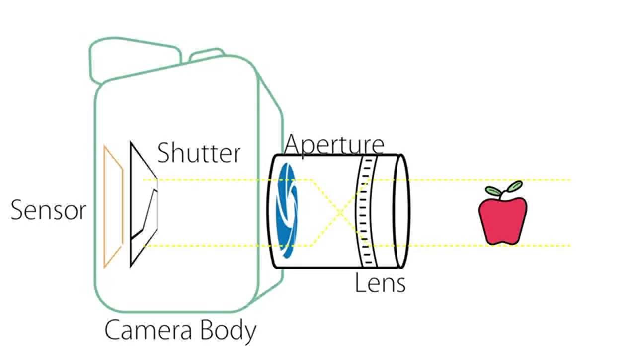 Camera Basics - Anatomy of a Camera - YouTube