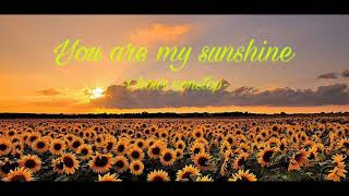 You are my Sunshine (1 Hour Nonstop)