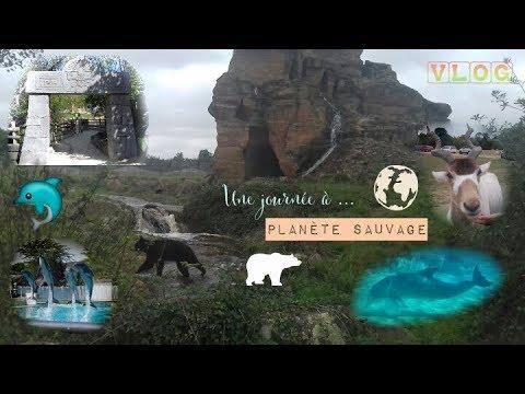 VLOG - Une journée à ... Planète Sauvage (Parc animalier Safari)