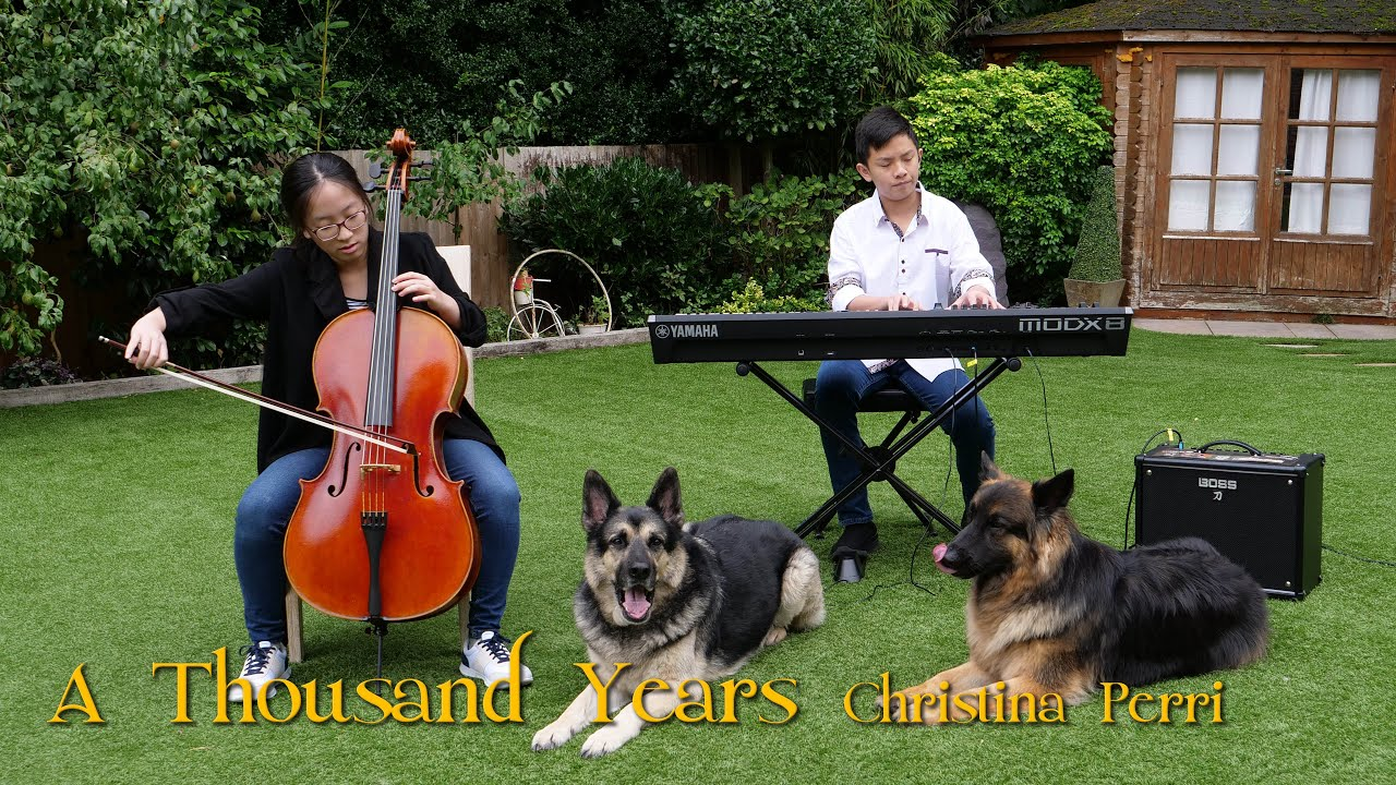 Christina Perri A Thousand Years Piano Cello Cover by Teenage Boy Girl and Dogs | Cole Lam & Seung-A