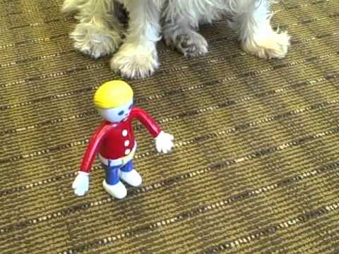 Mr. Bill moves to Boulder Park Apartments in Nashua, NH
