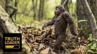 Bigfoot, Homeopathy And Ghosts (Popular Myths Explained) - Truthloader